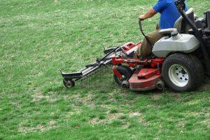 Lawn Dethatch Service